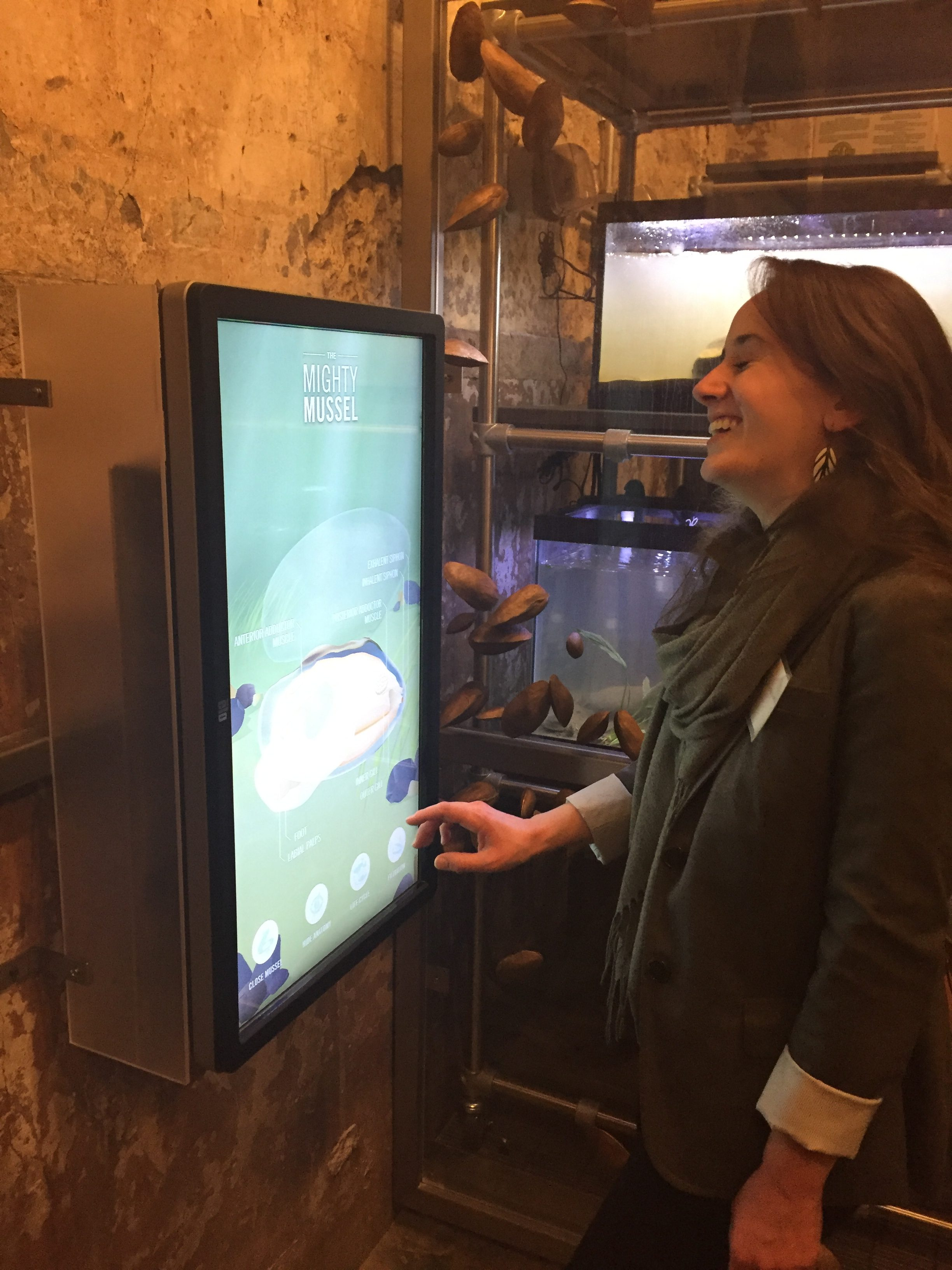 Fairmount Water Works Mighty Mussel Interactive